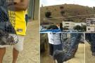 Macaco invade loja de roupas em Mantena em busca de alimento