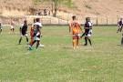 Confira os resultados da última rodada da Copa Rural em Barra de São Francisco