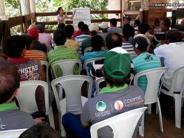 Propriedade em Mantenópolis é modelo para produtores que querem iniciar na atividade leiteira