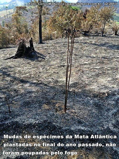SiteBarra+Barra+de+Sao+Francisco+fogo-40