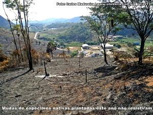 SiteBarra+Barra+de+Sao+Francisco+fogo-60